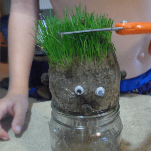 """If you are looking for easy kids crafts, these grass heads are really fun and easy to make and your kids will love cutting their grass """"hair""""."""