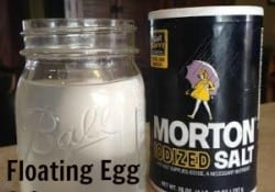 egg-water