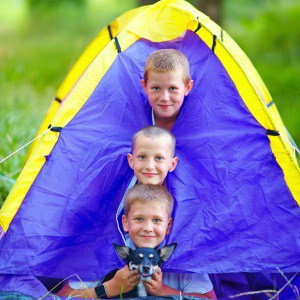 Three young boys looking out of a small tent