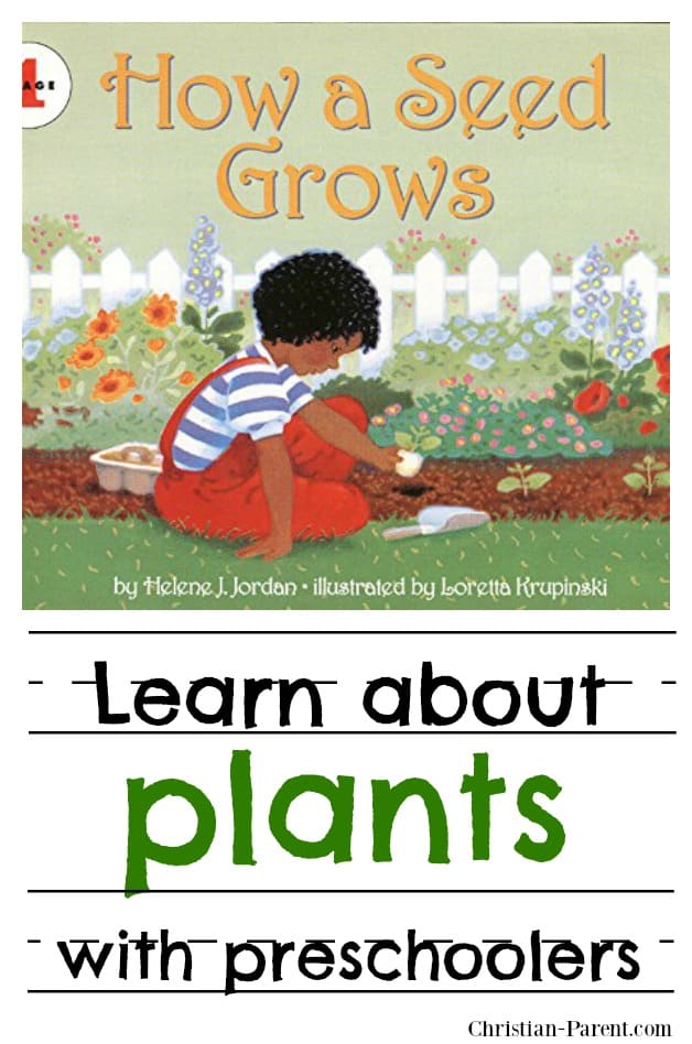 Help your preschool aged children learn about the plant world by letting them plant and tend some garden seeds.