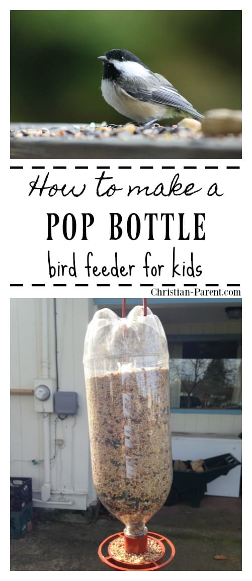 Easy DIY bird feeder for kids to make made from an empty soda or pop bottle.